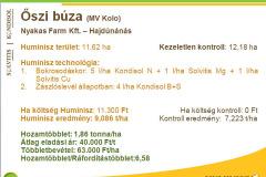 2016_09-buza-oszibuza
