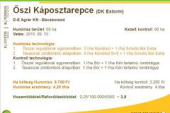 2016_08c-repce-kaposztarepce